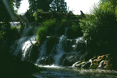 falling-water-makes-sound (FADICH PHOTOGRAPHY) Tags: oly olympia washington fadichphotography 2017 nature park tumwater tumwaterfalls falls plants trees river