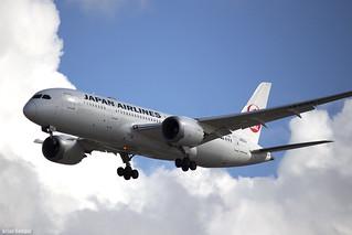Japan Airlines Boeing 787 Dreamliner JA832J