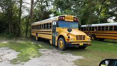 Bay District Schools #705 (abear320) Tags: school bus bay district schools ic blue bird thomas panama city florida
