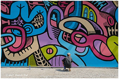 Final Touch Up On Artwork - Vancouver Mural Festival XP6858e (Harris Hui (in search of light)) Tags: harrishui fujixpro2 digitalmirrorlesscamera fuji fujifilm vancouver richmond bc canada vancouverdslrshooter mirrorless fujixambassador xpro2 fujixcamera fujixseries fujix fuji1024mmf4 fujizoomlens vancouvermuralfestival mural street streetart artist touchup working workingartist sunny mountpleasant backalley candid streetphotography wideangle wideanglezoom serious seriousaboutyourart