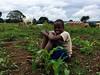 Ashley Peterson - IMG_8467 (LandOLakesID) Tags: ige innovation tanzania usaid africa gender smallholder