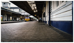 Abbot Clay (Gingydadtog) Tags: class66 dbs diesel freighttrain locomotive newtonabbot newtonabbotstation
