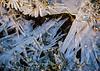 Glace dans le pré (Jacq-R) Tags: concret météorologieciel gel