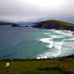 Head in the (Irish) Clouds. thumbnail