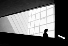 (Magdalena Roeseler) Tags: street strassenfotografie geometry minimal architecture light shadow silhouette people bw blackandwhite monochrome olympus zuiko