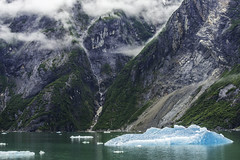 Junea_Alaska_tracy_1