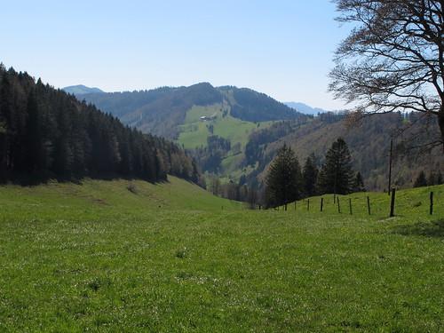 Schönenberg_047