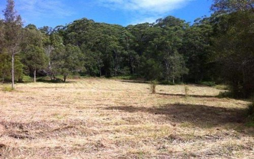 Lot 919 Lomandra Avenue, Pottsville NSW