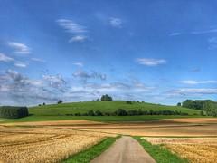 Felder und Himmel (Blende2,8) Tags: weg feldweg weizenfeld weizen bäume wald wolken himmel felder schwabenland schwäbischealb iphone deutschland badenwürttemberg