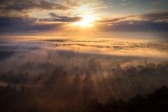 Rays Of Sunshine || HAWKESBURY || NSW (rhyspope) Tags: australia aussie nsw new south wales blue mountains hawkesbury penrith richmond winmalee lookout sunrise sun sunray tree forest fog mist view rhys pope rhyspope canon 5d mkii sky cloud weather
