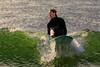 AY6A0326 (fcruse) Tags: cruse crusefoto 2017 surferslodgeopen surfsm surfing actionsport canon5dmarkiv surf wavesurfing höst toröstenstrand torö vågsurfing stockholm sweden se