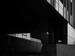 P9170184 (marcin.ciaś) Tags: warsaw warszawa bulwary monochrome olympus