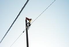 L1016988c (haru__q) Tags: leica m8 leicam8 jupiter12 jupiter light ライト 照明 telegraph pole electricwire 電柱 電線