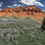 Red Hills on Gros Ventre Road (Kelly, Wyoming) thumbnail