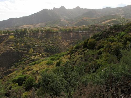 Gran Canaria_049