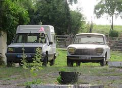 Renault Express and Peugeot 204 (Spottedlaurel) Tags: renault express peugeot 204