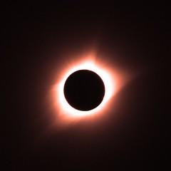St Louis Total Solar Eclipse 2017 (bnbalance) Tags: eclipse totalsolareclipse summer sky sun
