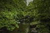 Watersmeet-River-LgeRocks-2-LR (Frank Etchells) Tags: water river devon watersmeet nationaltrust nt