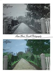 This one is a special one that my sister requested. Moya Johnston I hope you like it. #photography #photoshop #restore #bnw #colour #old #toomehouse #toome #Coantrim #northernireland (photoamfp) Tags: this one is special that sister requested moya johnston i hope you like it photography photoshop restore bnw colour old toomehouse toome coantrim northernireland