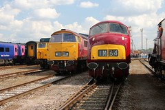 D1015 Old Oak Common 2nd September 2017  E1880 (focus- transport) Tags: trains old oak common open day classes 31 47 50 57 180 800 d british railways br oliver cromwell tornado colas gbfr gbrf gwr hst rail operations group railcar diesel steam great western railway high speed train gb freight
