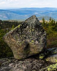 Blefjell (Ashild Andrea) Tags: blefjell mountain outdoors autumn fjell moss lichen heather lyng mose myr skog