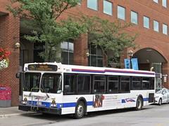 Brampton Transit 0213 (YT   transport photography) Tags: brampton transit new flyer d40lf bus
