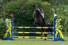 A9903703_s (AndiP66) Tags: springen derby aesch bl baselland 2017 juni june 13august2017 pferd horse schweiz switzerland kantonbaselland cantonofbaselland concours wettbewerb horsejumping springreiten pferdespringen equestrian sports pferdesport sport sony alpha sonyalpha 99markii 99ii 99m2 a99ii ilca99m2 slta99ii sony70400mm f456 sony70400mmf456gssmii sal70400g2 amount andreaspeters