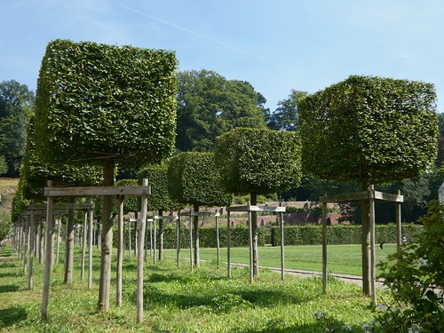 Rouge-Cloître Abbey, Cloister garden