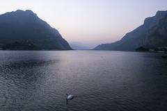 ITALIA - Lecco (paola_pensa) Tags: allnaturesparadise