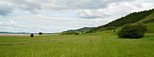 Landschaft am Stausee Kelbra