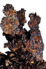 Rust Sculpture (Mark Wasteney) Tags: macromondays rust iron ferrousoxide metal metallic madeofmetal macro closeup upclose textures patterns shapes