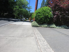 IMG_6461 (Andy E. Nystrom) Tags: bellevue washington wa bellevuewashington clydehill clydehillwashington