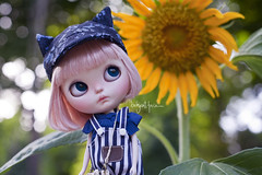 """Wow momma, I think this is the biggest flower I've ever seen"" (_babycatface_) Tags: blythe blythecustom babycatfacedollies babycatface blythedoll custom customblythe customdoll cute cutiepie doll dollphotography dollcustom toy toyphotography takara takaradoll takaratoy"