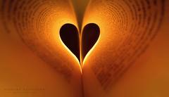 L I G H T I N G  .  H E A R T (Graphic design - Photo - Art) Tags: heart lovestory love light światło serce book książka tekst text orange shadow