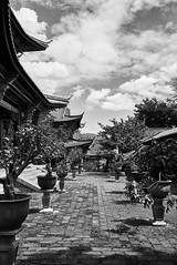 Leica Monochrom (0verexposed) Tags: leica monochrom typ246 lijiang china asia summicron yunnan