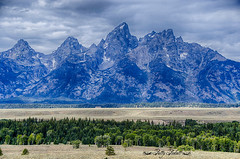 Grand teton national park Wyoming (Pattys-photos) Tags: grand teton national park wyoming pattypickett4748gmailcom pattypickett