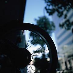 Stranger (Yosh the Fishhead) Tags: rollei rolleiflex rolleiflexautomat rolleiflexautomatmx carlzeiss carlzeissjena carlzeissjenatessar carlzeissjenatessar75mmf35 fujifilm fujichrome provia100f provia slide slidefilm squareformat mediumformat 6x6 tokyo japan dof bokeh bike bicycle wheel rdpiii 120 120film filmphotography tlr twinlensreflex square