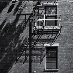 Shadows on a wall. (Tim Ravenscroft) Tags: shadows wall lowell massachusetts monochrome blackandwhite blackwhite hasselblad hasselbladx1d x1d