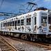Tamaden Train たま電車