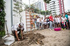 Plantio das árvores - Instituto Capibaribe (institutocapibaribe) Tags: marfotografia ipê roxo ubaia ic institutocapibaribe