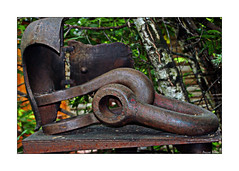 Any Old Iron (paulinecurrey) Tags: iron old decaying rust rustic sculpture outdoors woodland rural closeup stilllife