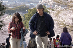Couple With Blossom (DMeadows) Tags: dmeadows davidmeadows japan japanese asia asian holiday vacation tour tourism travel trip visit culture cherry blossom sakura people person man woman men women disused railroad railway abandoned overgrown tracks walkway kyoto keageincline