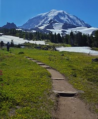 Spray Park, Mount Rainier National Park (Dan Nevill) Tags: wonderland rainier wonderlandtrail mtrainier mountrainier nationalpark backpacking camping trail wilderness alex kieth hiking wildflowers washington pacificnorthwest pnw