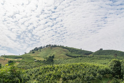 wiang kaen district - thailande 71