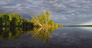 Morning Light on the Ottawa River