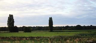 Tilburg: Outside area