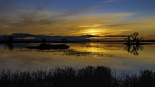 Merced Wildlife Refuge Sunset
