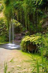 Ireland - Blarney - Castle gardens (Marcial Bernabeu) Tags: marcial bernabeu bernabéu blarney castle castillo gardens jardines green verde water agua