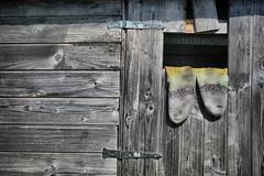 Socks (Siuloon) Tags: zakopane door drzwi drewno tekstura góral