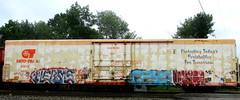 herms - ceya - vergl (timetomakethepasta) Tags: herms ceya vergl anh hot boy chemung freight train graffiti art reefer cryx cryotrans rusted worn benching selkirk new york photography